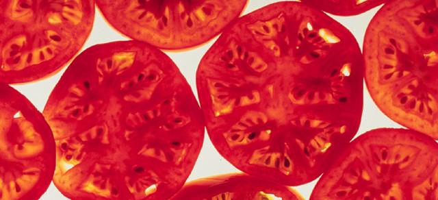 Cultural Capsule: The Origin of the Tomato
