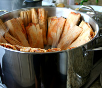 Steaming Hot Tamales for Princess House 2