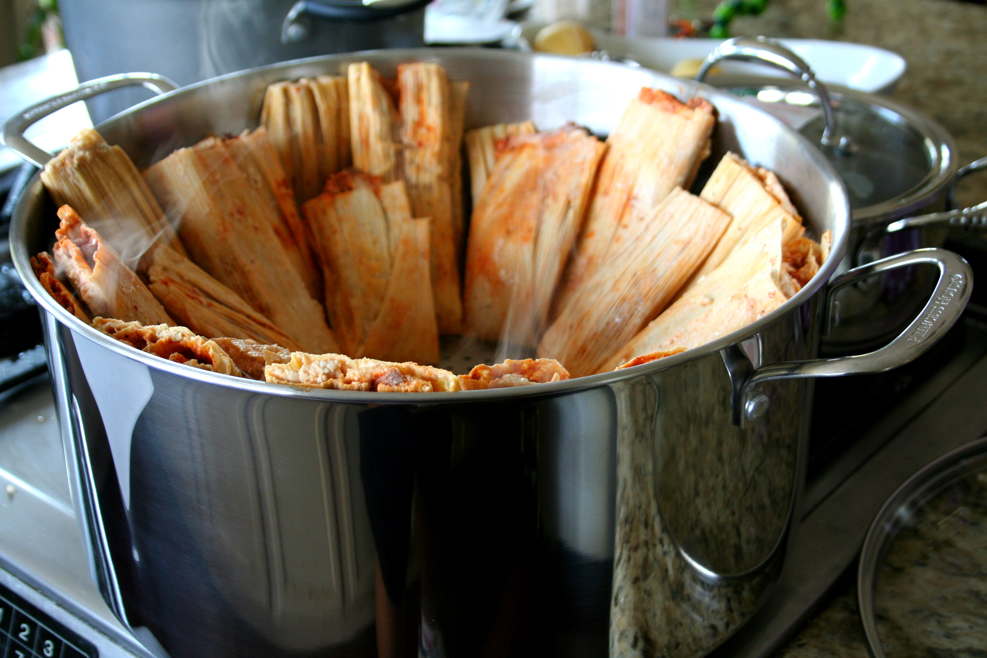 7644 Steaming Hot Tamales for Princess House 2