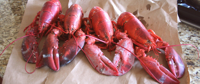 A Tale of Two Lobsters with LatinoFoodie #Giveaway #Spon