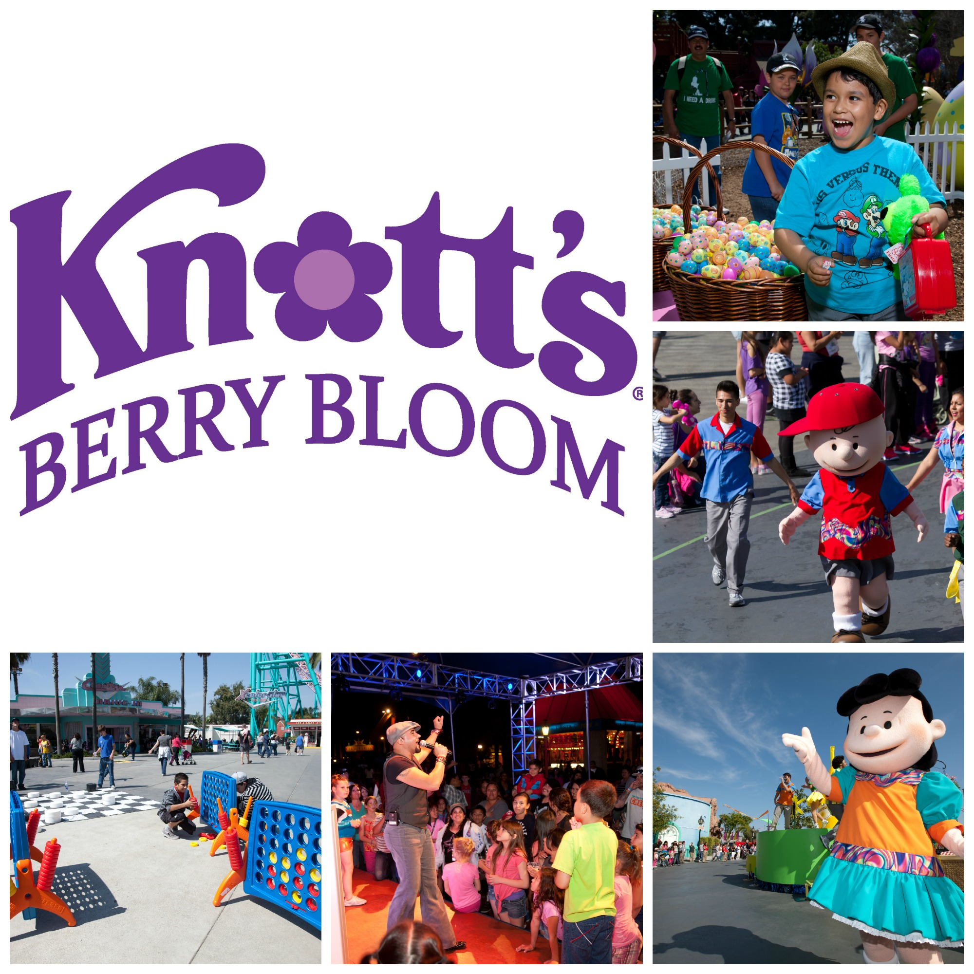 Knott's Berry Bloom